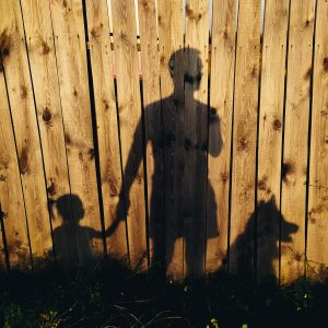 volkov_family_reflaction