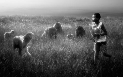 """Let the Children Come to Me"" Photo by Charlaine Gerber"